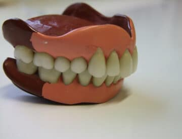 Old, Vintage Porcelain Teeth, Complete Denture Plate Set